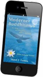 Moderner Buddhismus als gratis eBook